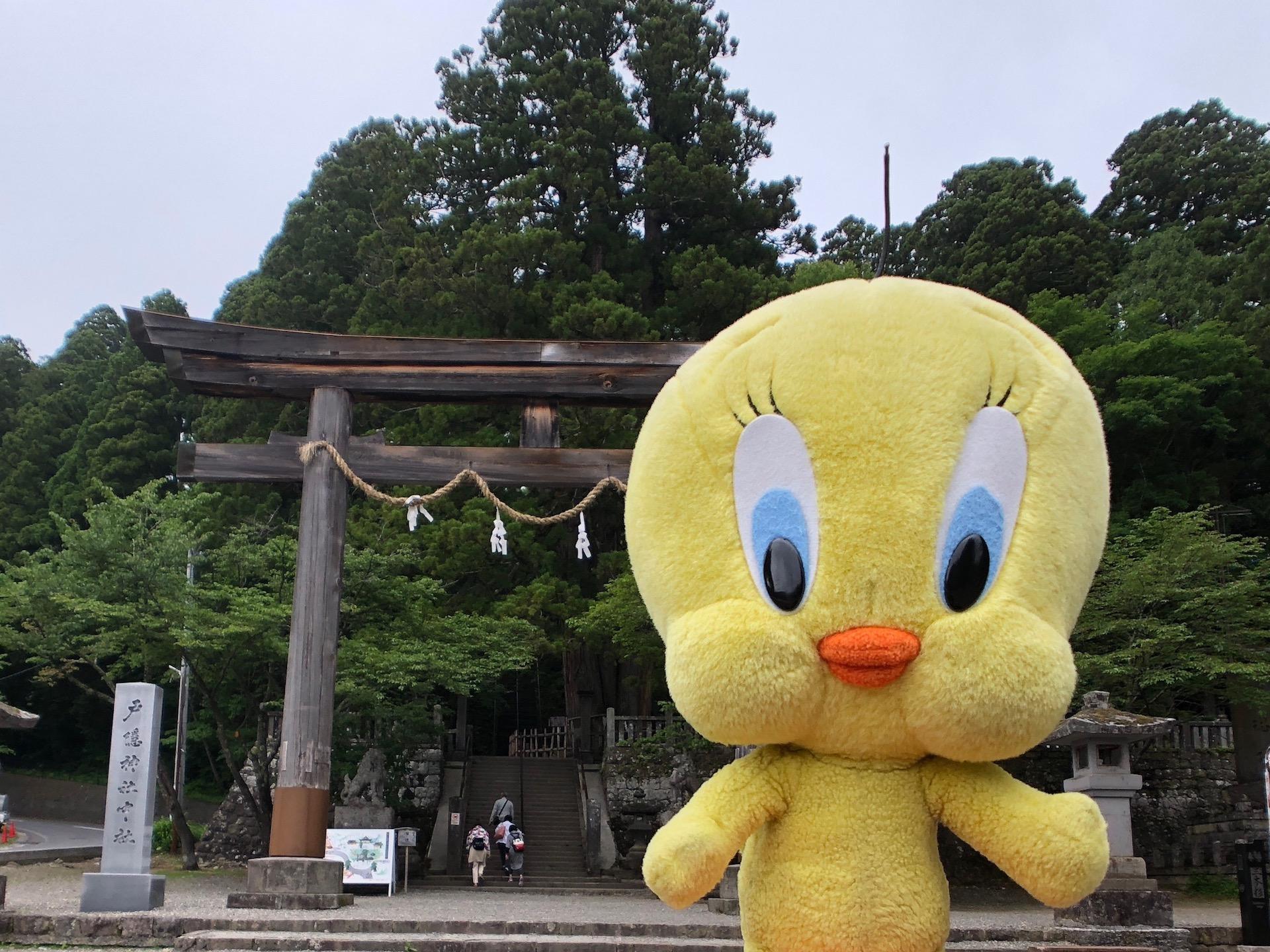 戸隠神社に行く前のチェックポイント5つ