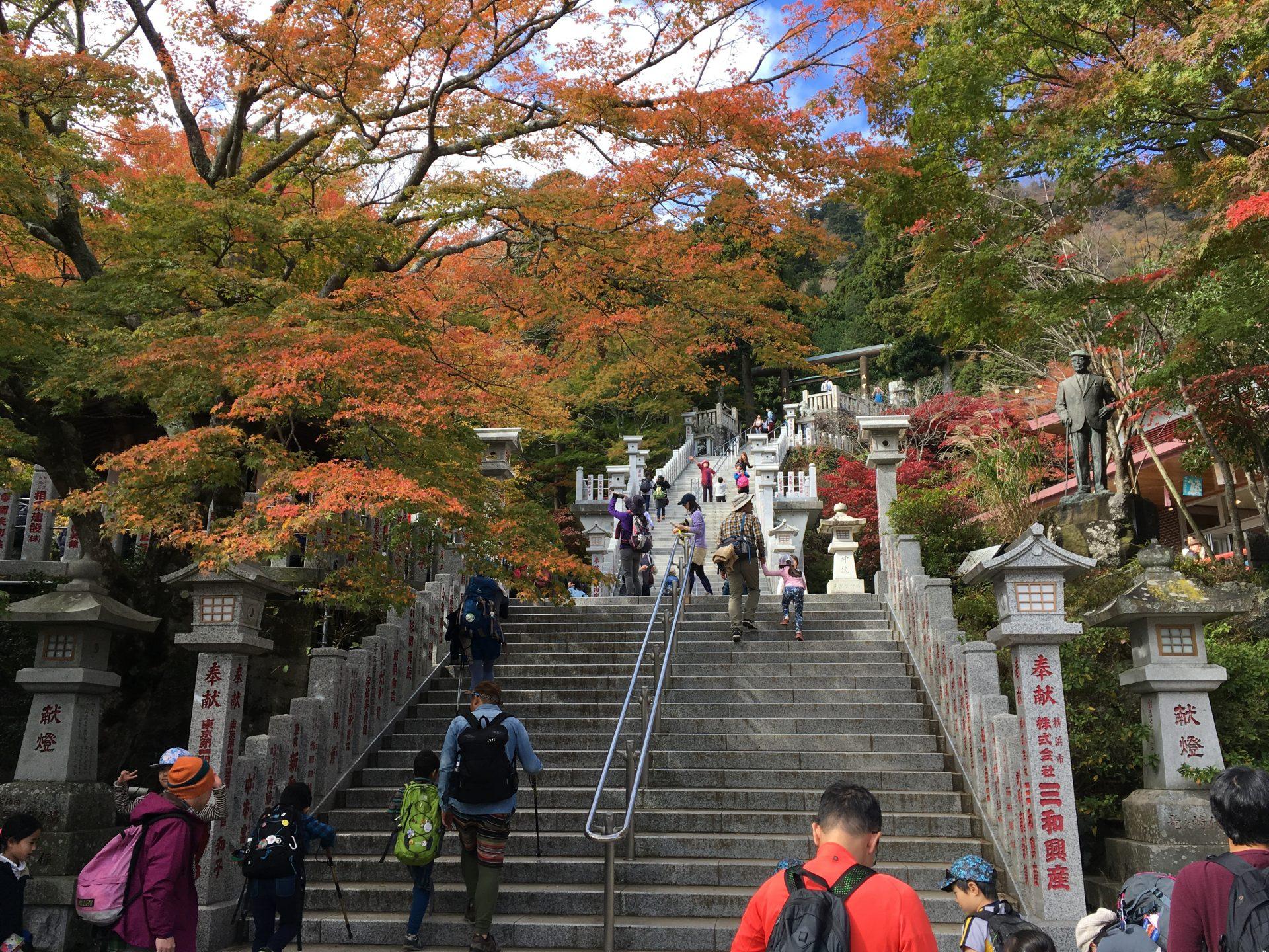 大山阿夫利神社への登山:所要時間やケーブルカー情報まとめ