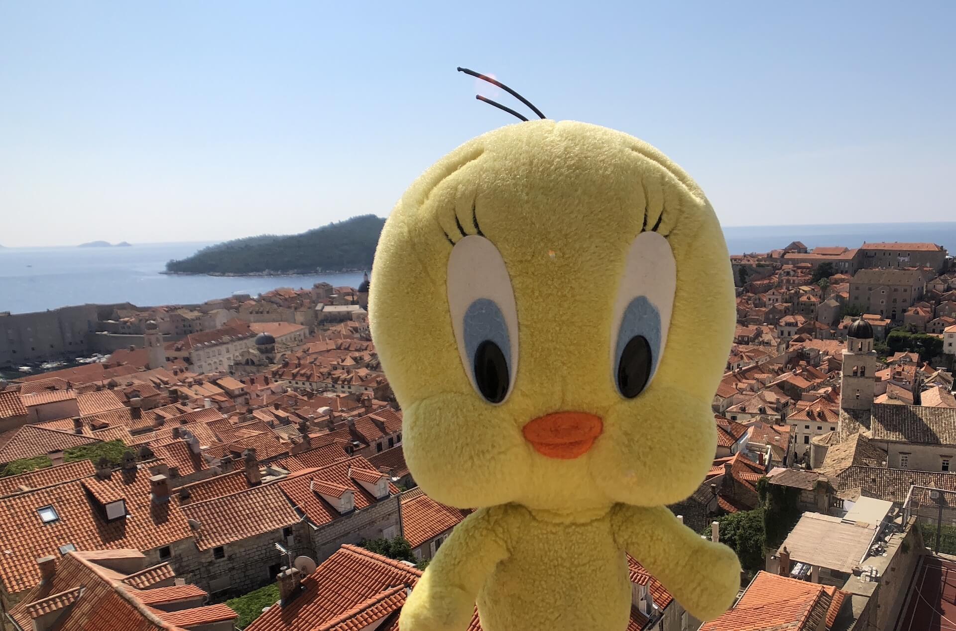 クロアチアの旅:世界遺産の街ドゥブロブニク